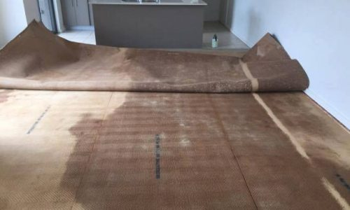 carpet damage in rental home property management